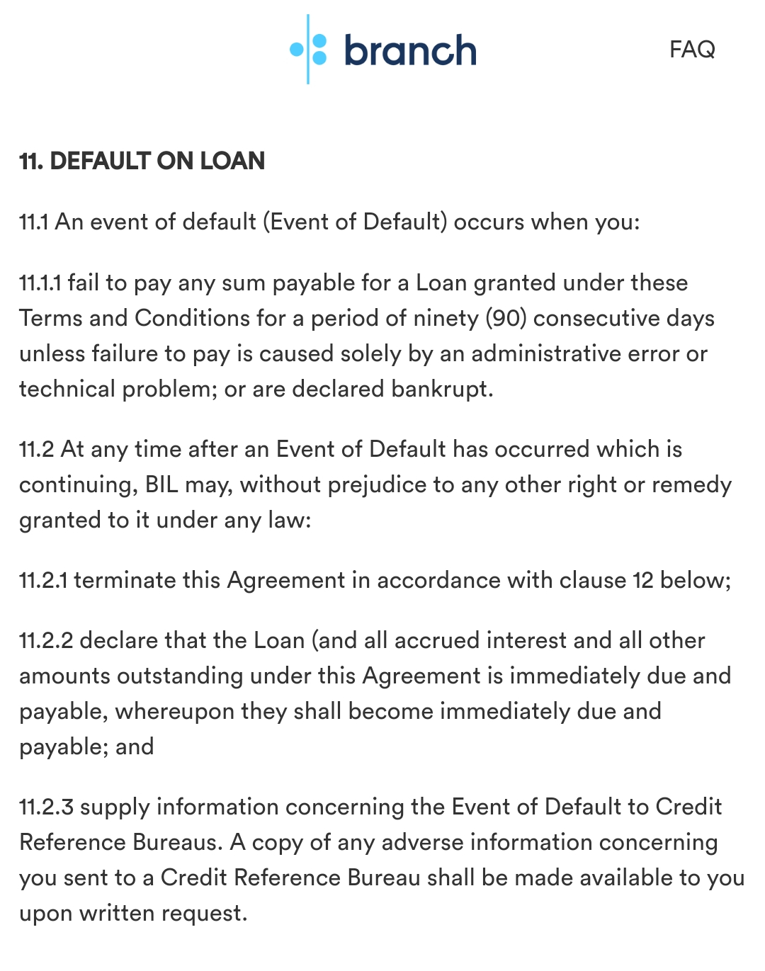 Branch loan terms and conditions